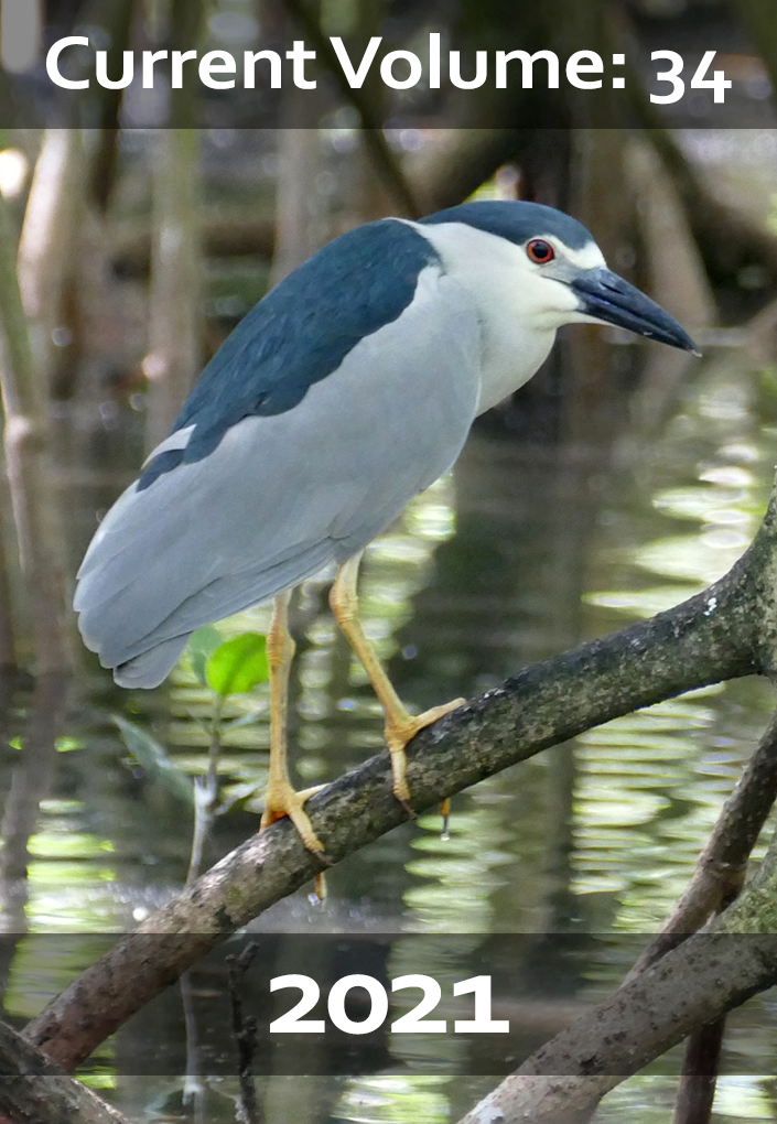 Black-crowned Night-Heron, by Marlene De La Cruz-Guzmán